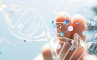 Optogénétique : une innovation permettant de retrouver une vue partielle