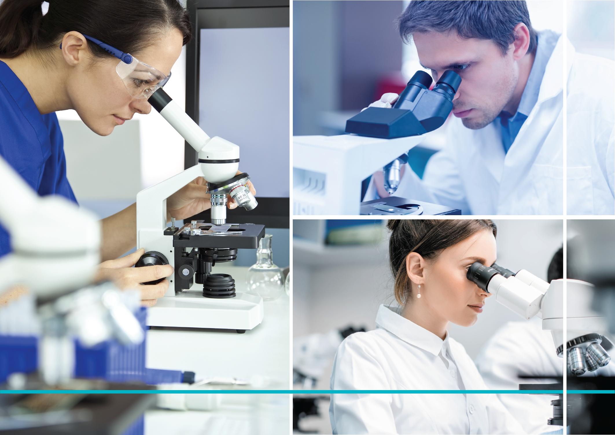 Plusieurs chercheurs avec microscope